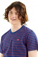 LEVIS Striped t-shirt and micrologist